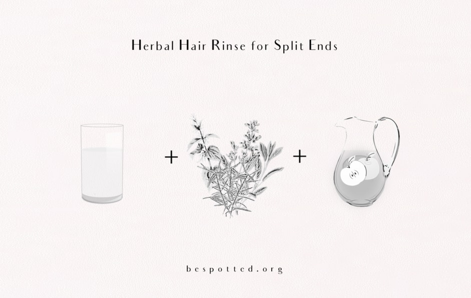 Ingredients for Herbal Hair Rinse for Split Ends with Apple Cider Vinegar