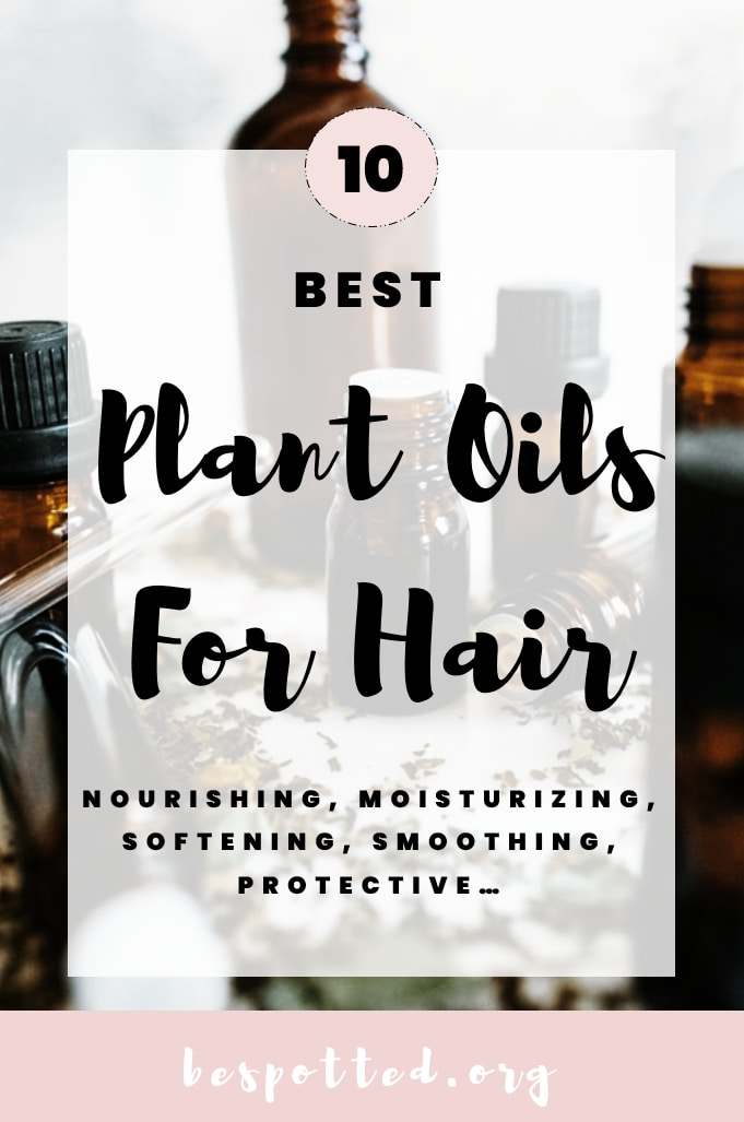 Best Oils for Hair Care – A Pinterest Friendly Image