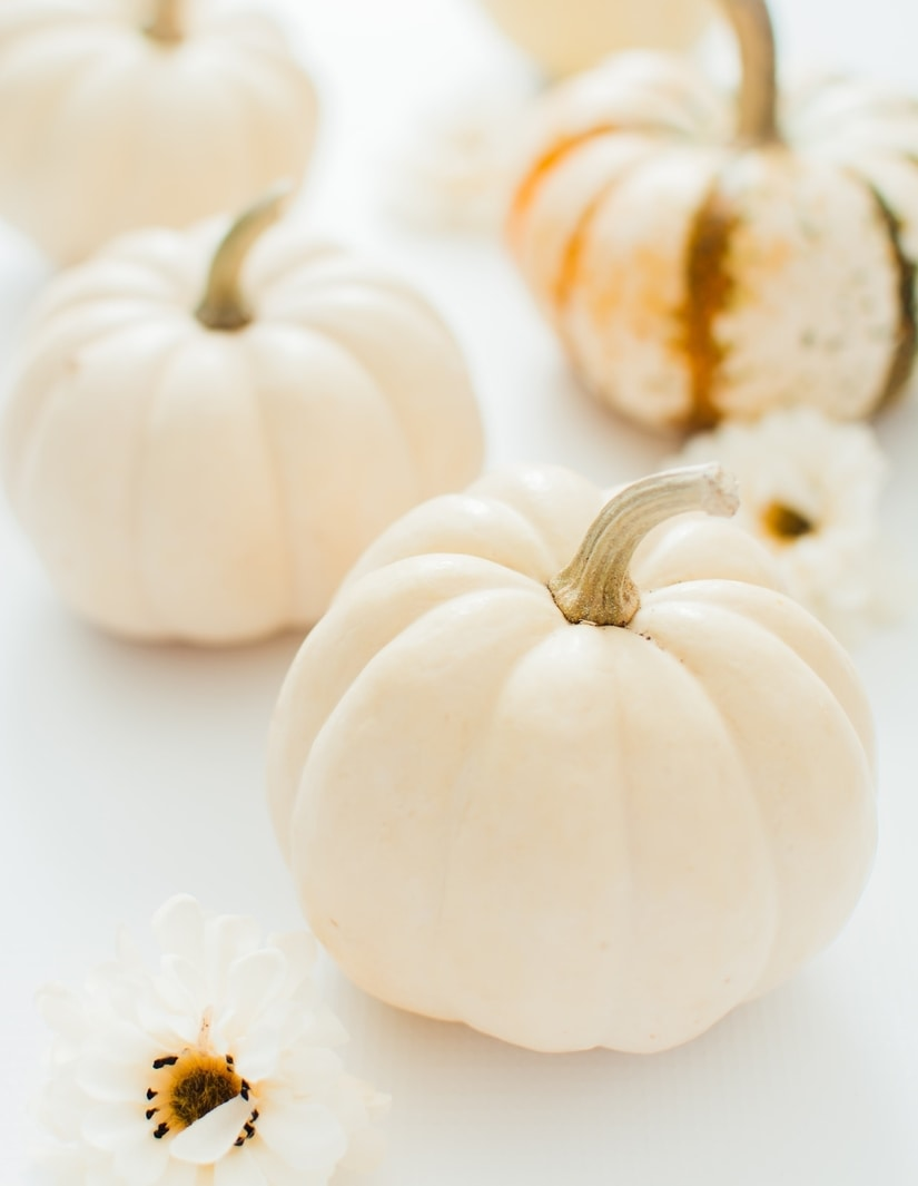 the benefits of pumpkin skincare products
